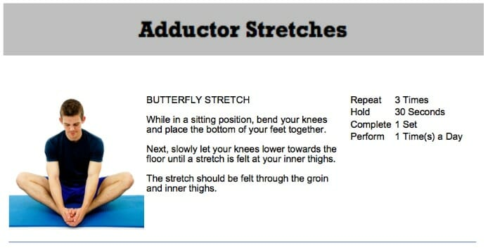 oakville chiropractor adductor stretch