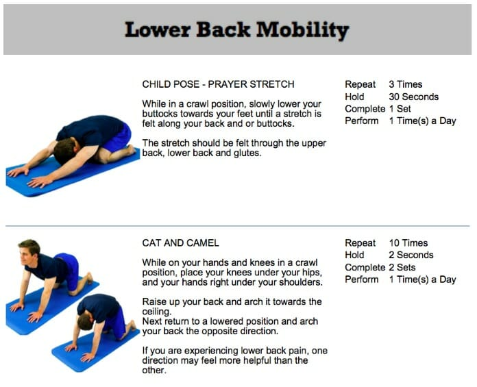 oakville chiropractor lower back mobility exercises