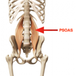 Do You Have a Tight Psoas?