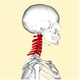neck pain treatment oakville chiropractor