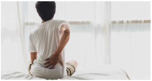 oakville chiropractor low back pain